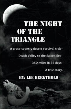 The Night of the Triangle - cover